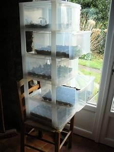 Mini Serre D Intérieur : meuble tiroirs reconverti en mini serre sp ciale hiver ~ Dailycaller-alerts.com Idées de Décoration