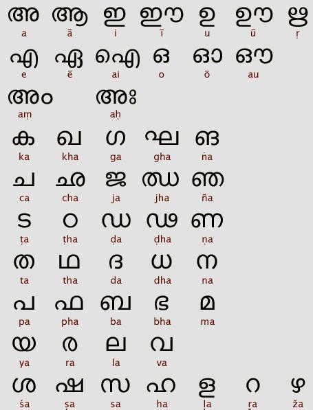 pin  alphabet worksheets