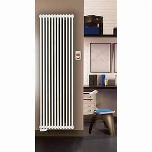 Radiateur Electrique Decoratif : radiateur electrique fluide ~ Melissatoandfro.com Idées de Décoration