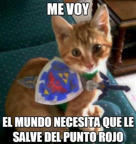 Memes De Gatos - best 25 memes de animales chistosos ideas on pinterest memes de perro memes perros and
