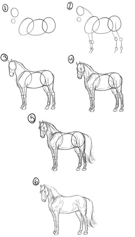 step  step tutorial  drawing  horse