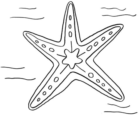11 Starfish Coloring Pages And Ocean Beach Themed Party