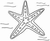 Starfish Coloring Pages Drawing Line Designlooter Getdrawings Drawings Print Site Zebra 95kb 1005px 1200 sketch template