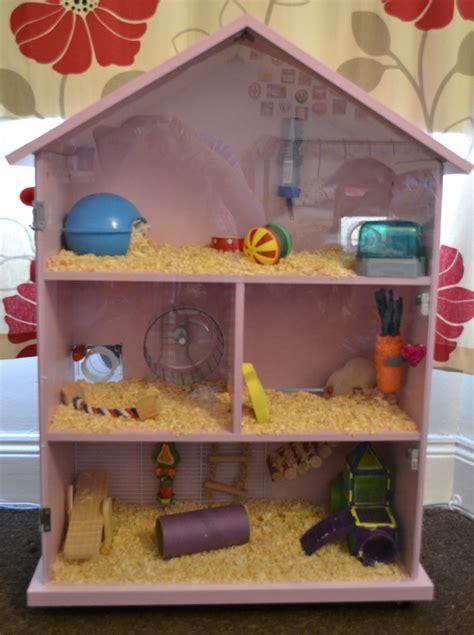 finished  hamster house   hamster phoebe