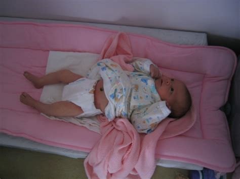 Lemony Webbles Baby Update