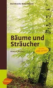 Sträucher Online Kaufen : steinbachs naturf hrer b ume und str ucher jetzt online bestellen ~ Buech-reservation.com Haus und Dekorationen