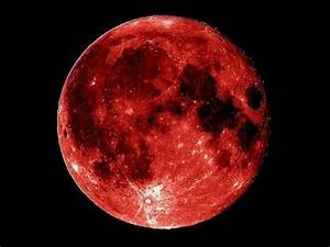 Real Blood Moon Nasa (page 2) - Pics about space