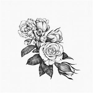 Flower Drawing Tumblr Tag: Daisy Flower Drawing Tumblr ...