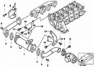 Original Parts For E46 320d M47 Touring    Engine   Emission