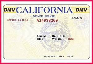 wonderful fake id template images resume ideas With florida drivers license template