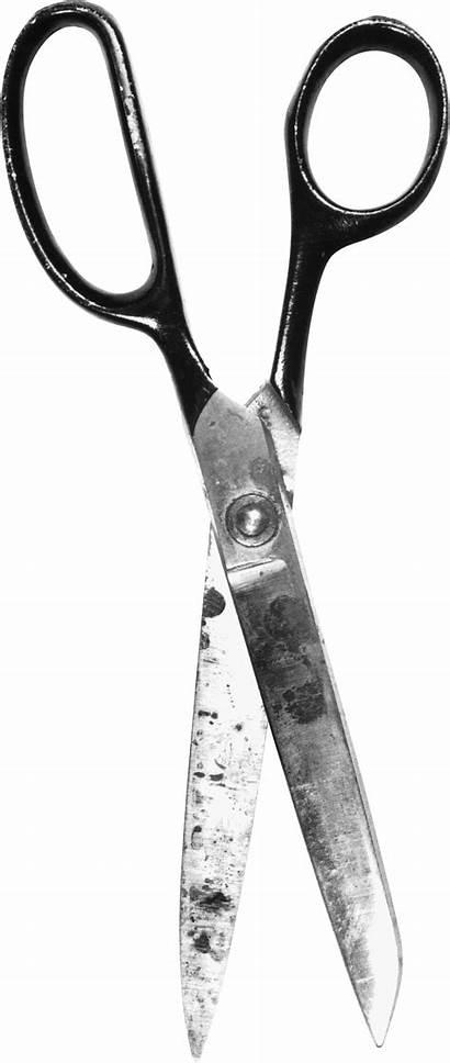 Scissors Transparent Pngs Purepng Scissor Tijeras Cutting