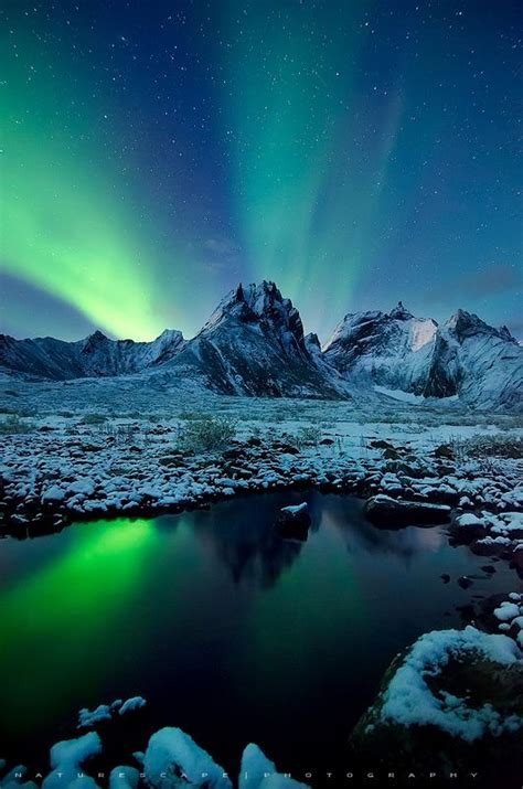 northern lights tours canada 33 best yukon images on pinterest