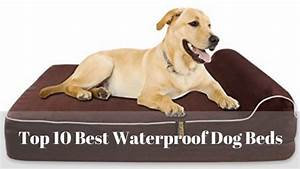 top 10 washable waterproof dog bed reviews in 2018 With best washable dog beds