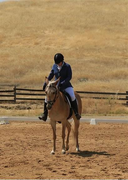 Camelot Horse Dressage Trials Schooling Argghhh