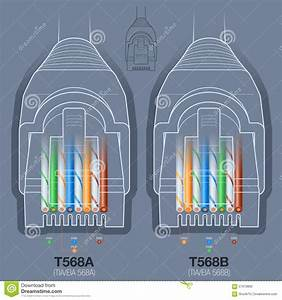T568a And T568b Wiring  T568a  Free Engine Image For User