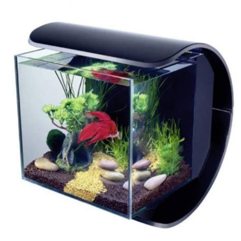 petit aquarium design pas cher