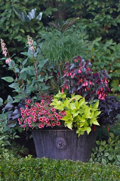 Container Gardening Magazine, 2012 Edition Traditional
