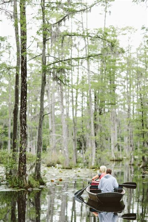 cypress gardens charleston sc the best places to propose in south carolina the yes