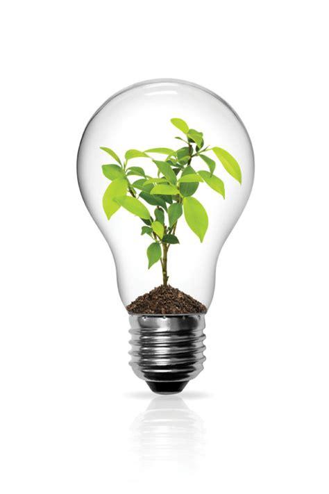 set  light bulb design elements vector  vector