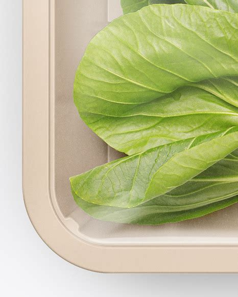 Large please write your comments and suggestions on my mockups. Plastic Tray With Broccoli Mockup - Free stationery ...