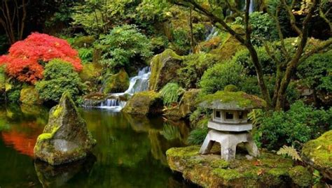 Kā izveidot japāņu dārzu: 10 likumi - DELFI