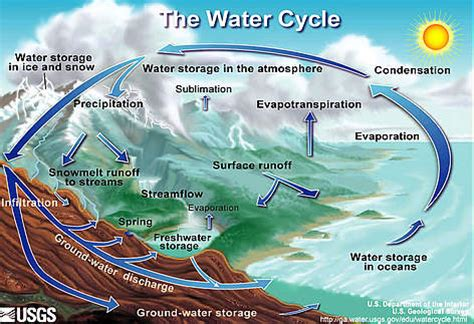water cycle wwf