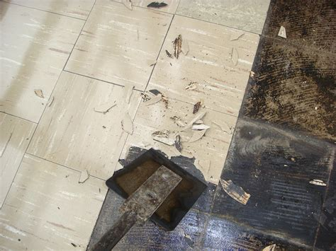 asbestos floor tile removal   common method