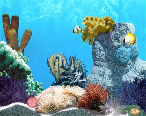 Free Animated Fish Screensavers