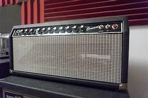 Guitar Picks Best Buy  Guitar Amp Repair Nyc