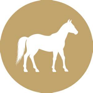 futterkohle fuer pferde