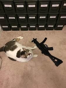 My Kitty Loves My Mp5k Clone