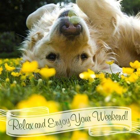 relax  enjoy  weekend weekend dog flowers happy