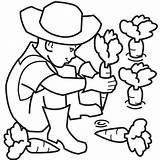 Farmer Coloring Pages Clipart Carrot Plant Farm Colouring Farmers Cartoon Kid Planting Learning Fun Carrots Cliparts Boy Clip Children Illustrations sketch template