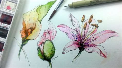 draw paint flowers  ink  watercolor part
