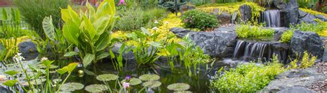 Aquascape Environmental by Aquascape Houzz