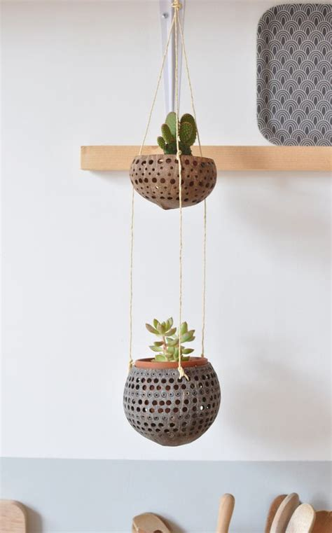 plante noix de coco en pot suspension noix de coco decoration planters jardini 232 res suspendues et supports