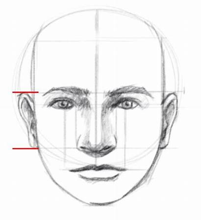 Face Draw Proportions Facial Sketch Drawing Drawings