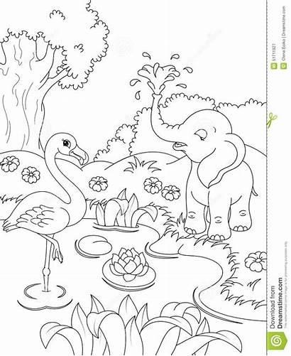 Coloring Animals Nature Elephant Flamingos