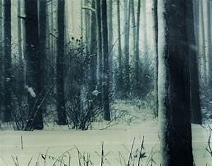 Photo Wall Mural Mystical Winter Forest Wallpaper Wall art ...