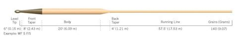 trout fish   fly rod part   fly