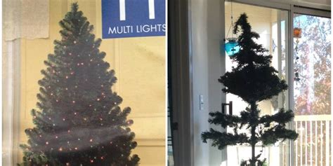 the world s most disappointing christmas tree picture