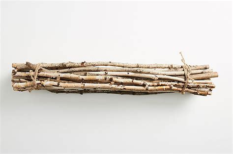 How much would you pay for this bundle of sticks? Photo - Anthropologie Is Literally Selling A ...