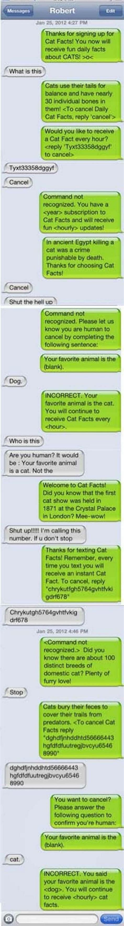 hilarious wrong number texts   epic responses
