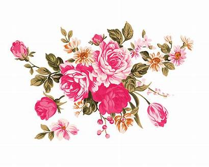 Peony Clip Flower Garden Clipart Roses Pink