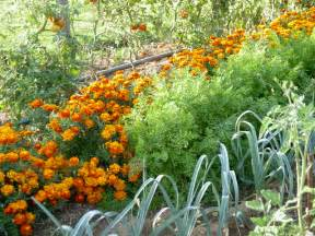 Mon Jardin En Permaculture by File Association Potager Png Wikimedia Commons