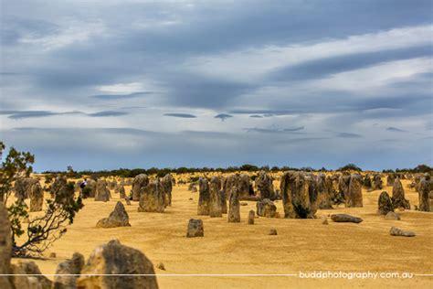 pinnacles western australia budd photography
