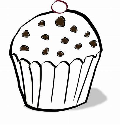Muffin Coloring Pages Muffins Chocolate Cookies Clipart