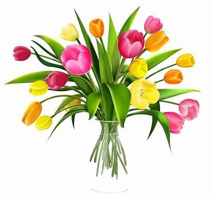 Vase Clipart Flowers Clip Tulips Flower Google