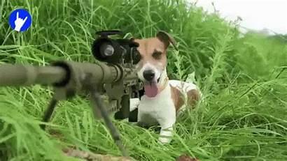 Sniper Airsoft Essentials