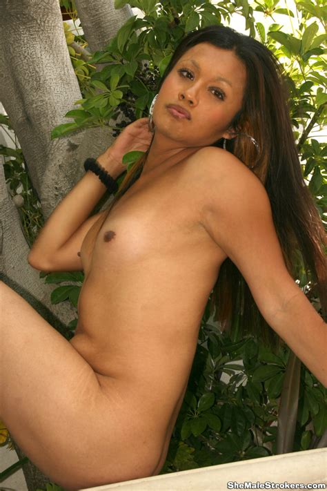 elanh on shemale strokers — hungangels tgirls and tgirls transsexuals